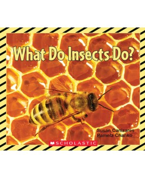 What Do Insects Do? Big Book