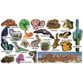 Desert Plants & Animals