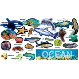 Ocean Plants & Animals