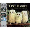 Owl Babies: Paperback with DVD