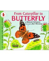 From Caterpillar to Butterfly (Big Book)