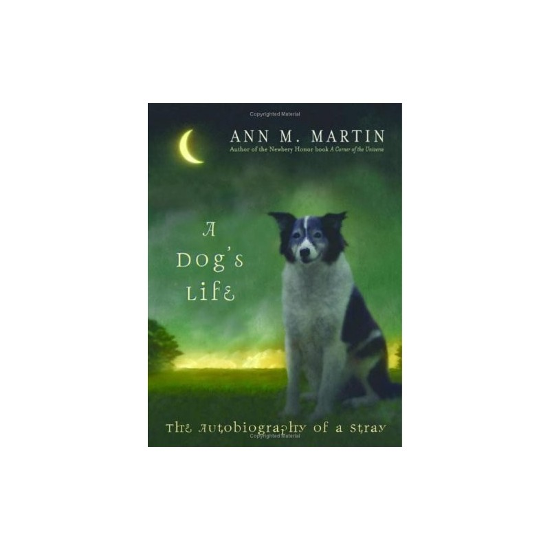 essay on autobiography of a stray dog A dog's life: the autobiography of a stray is a children's novel written in 2005 by ann m martin and is published by scholastic books the target audience for this.