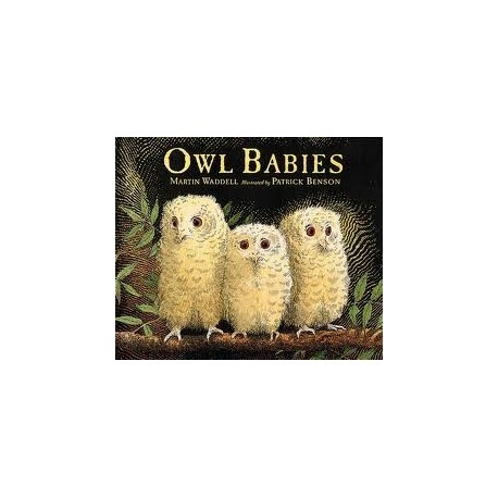 Owl Babies (Big Books)