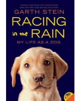 Racing in the rain (my life as a dog)