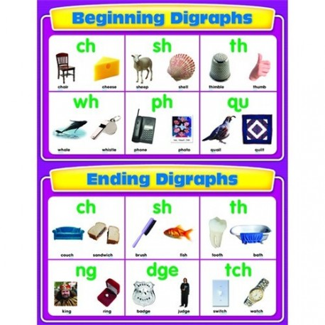 Beginning and ending digraphs CD114067