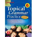 Topical grammar practice 6