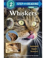 Whiskers (step 2)